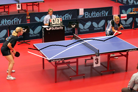 table tennis rules essay