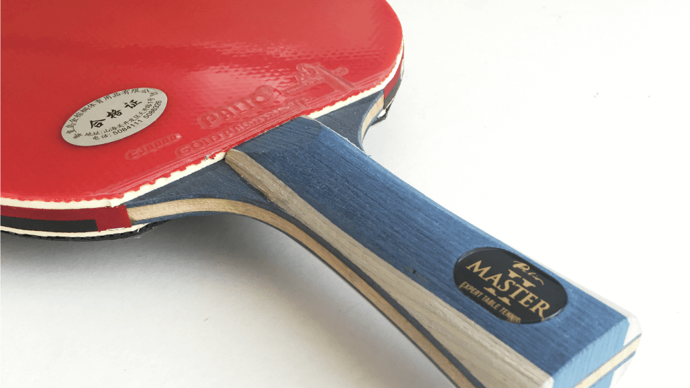 Palio Master 2 Review