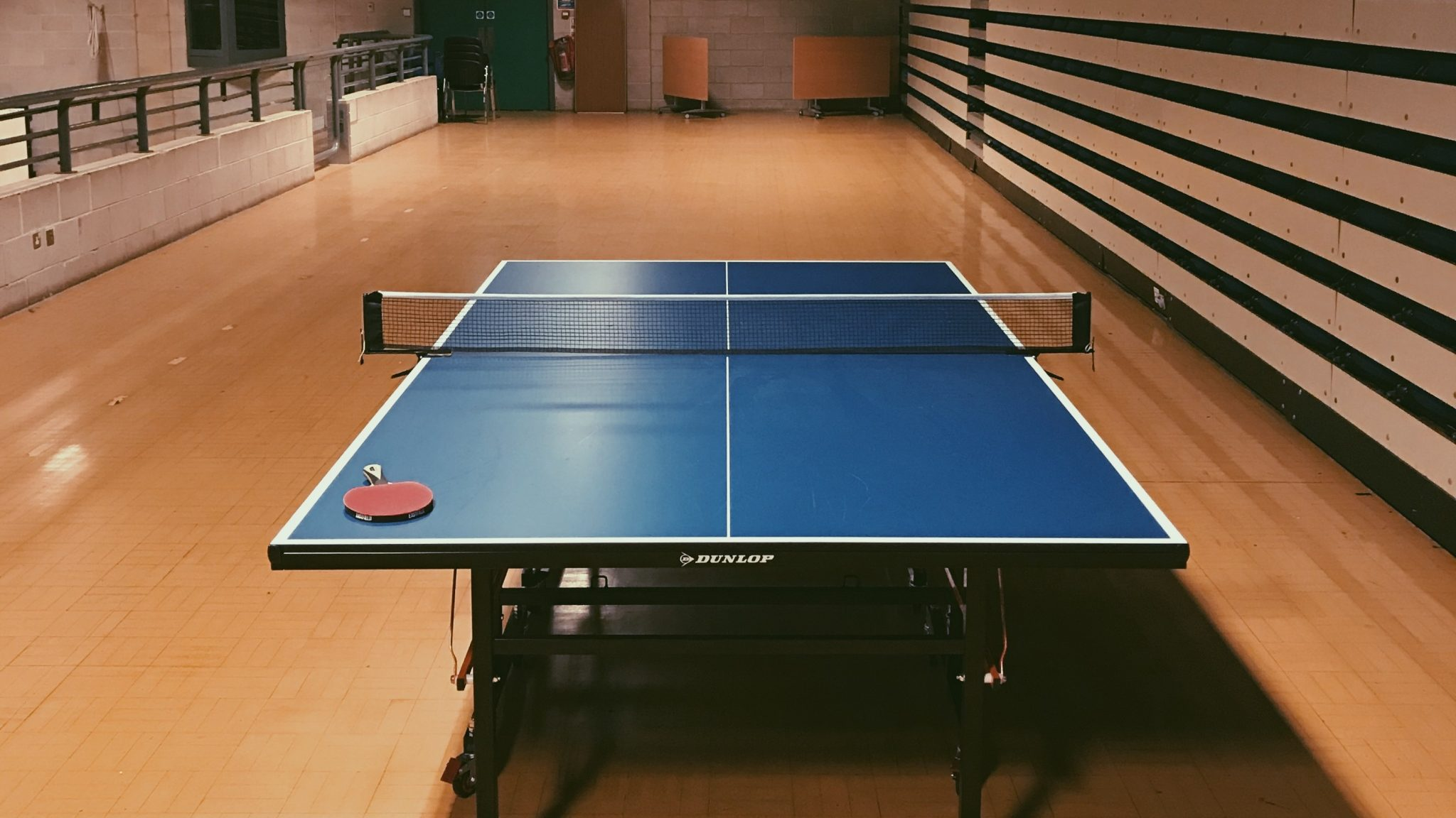 Talent, Practice, and Why Harrie Almost Quit Table Tennis (S02E08)